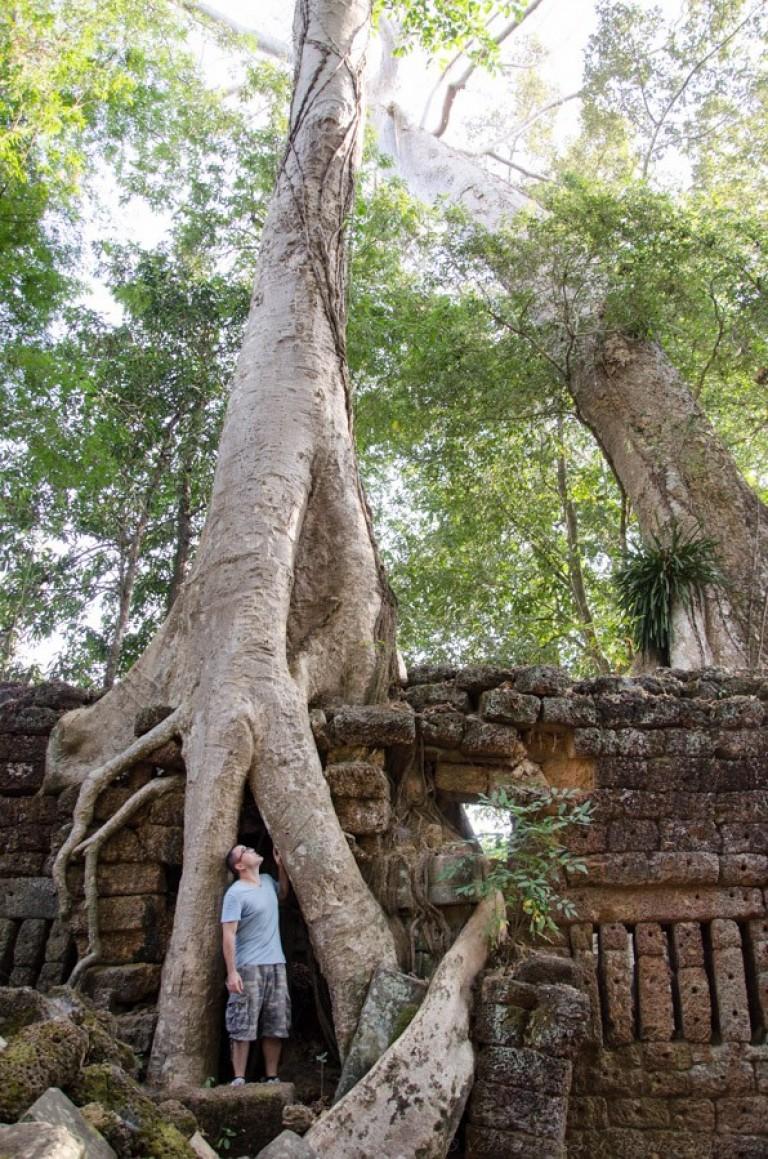 Cambodia siem reap ankor wat-55